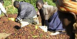 FOLKLORE OF THE KIKUYU PEOPLE IN KENYA
