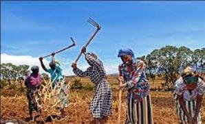 SPORTS AMONG THE KIKUYU PEOPLE IN KENYA