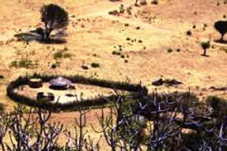 Conflicts  of the Karamojong