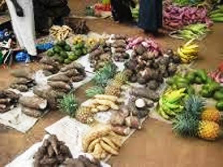 The economy setup of the kakwa