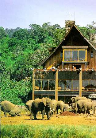 Aberdare National Park in Kenya