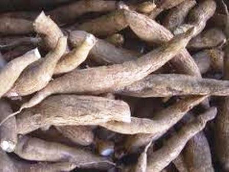 Basamia-bagwe economy