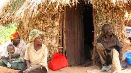 Traditional Economy of Batwa ,bambuti