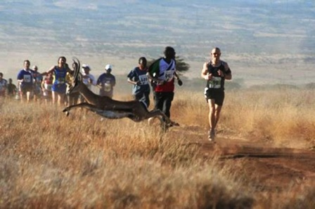 The impact of the Lewa Marathon on the local Kenyan community