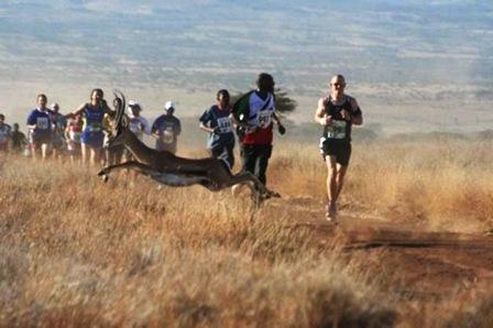 Lewa Marathon Festival in kenya
