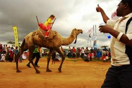 Maralal Camel Derby, the only one of its kind in Kenya