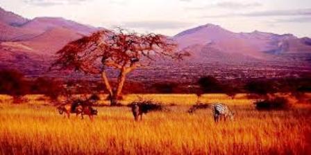 Nasolot National Reserve
