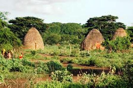 The houses of the rendile people in northern kenya