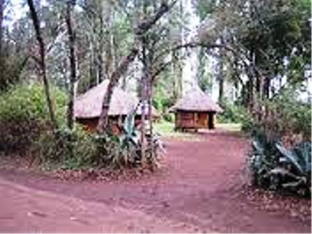 The traditional houses of the terik people of kenya