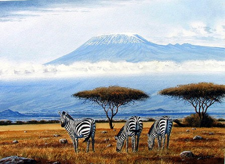 Zebras of Amboseli National Park in Kenya