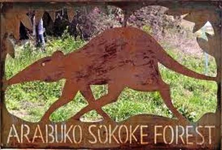 on the Gate to  Arabuko sokoke forest national park