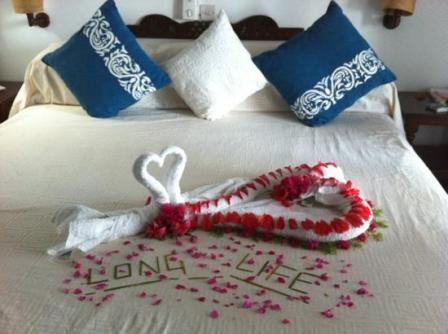 our accommodation at  marine parks of Malindi and Watamu