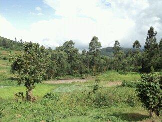 DeepAfrica School Kenya