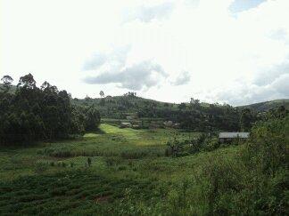 Dima College Kenya