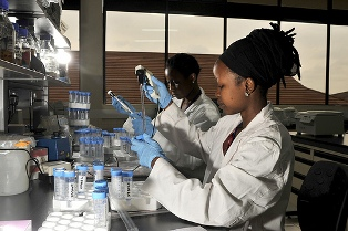 French Institute for Research in Africa