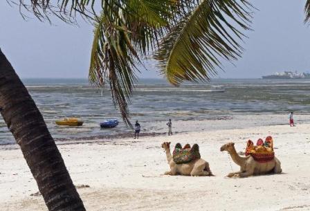 the beaches of mombasa, the land  cof the swahili people in kenya