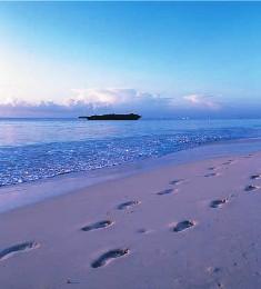 Malindi and Watamu Beaches Destinations