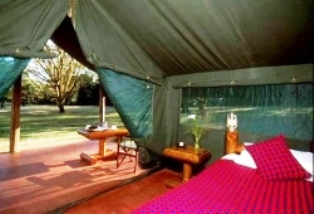 Siana Springs Tented Camp in masai mara game reserve