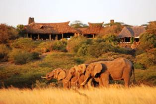 wildlife accommodation and safari lodges in Kenya