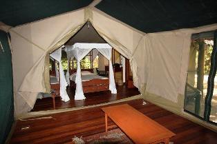 Three Nights air safari to mystical Shaba of Joy's Camp