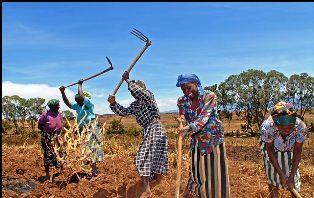 Kikuyu People in Kenya