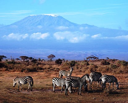 Kenya Tour to amboseli national park
