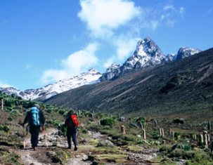 Climbing  Mt Kenya in the National Park