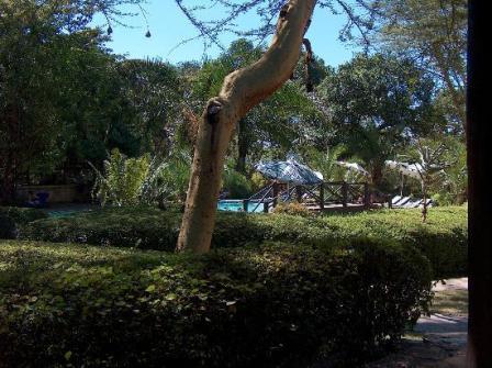 Nakuru Backpackers Hostel