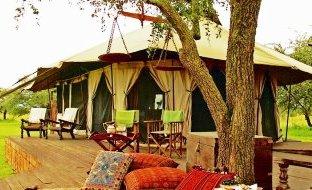 Sabora Tented Camp in Serenget Sabora Tanzania