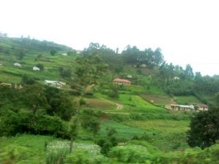 Sokoine University of Agriculture Tanzania