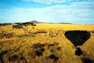 kenya wildlife safaris in balon