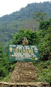 Udzungwa Mountain National Park