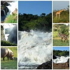 Murchison Falls national park in uganda