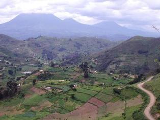 Uganda Safari10, Your 11 Safari Days in Uganda
