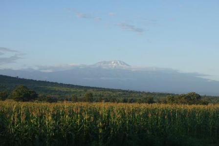 the scenery of uganda