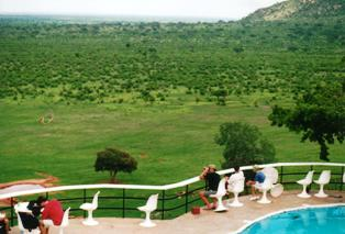 our lodge in voi town of kenya  called voi wildlife lodge