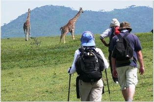 Walking Safaris in Tanzania