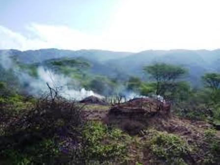 charcoal burning in terikland in kenya