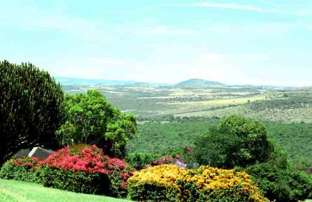 the land scape of nyeri in kenya