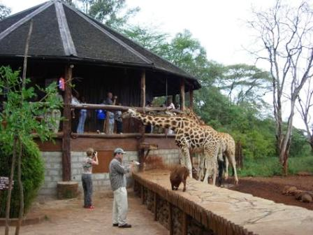 Nairobi Giraffe Center Hotel