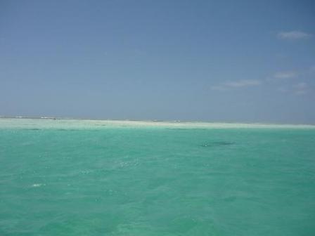 Dar es Salaam Dulce Caf