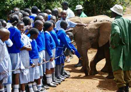 kenyan children in nairobi national park zoo