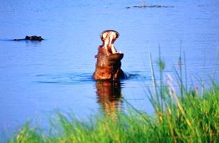 Katavi National Park in Western Tanzania