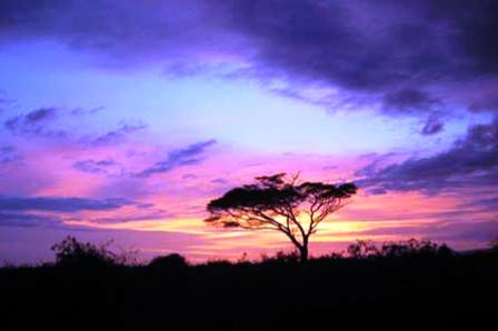 Climate, Weather And Nature In Kenya