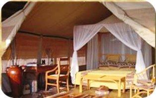 Kikoti Tented Camp in Tarangire Tanzania