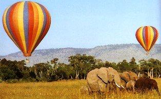 Two Days Masai Mara Safari with Siana Springs Tented Camp