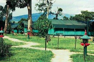 Siana Springs Tented Camp in masai mara game reserve