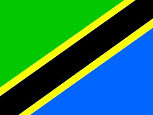The meaning of Tanzania Flag
