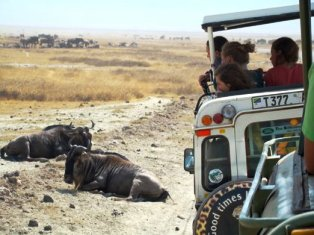 Tanzania Tourism Sector Investment Opportunities