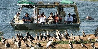 Tourism Sector Business Opportunities in Uganda